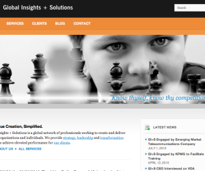 Global Insights website